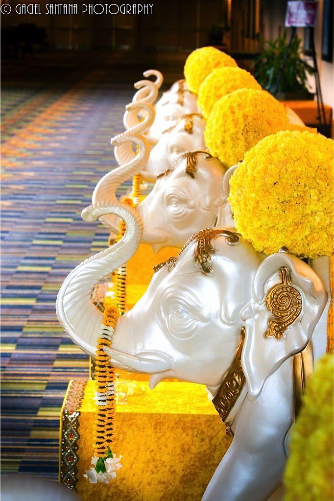 Welcome decor, elephants, Indian wedding, yellow flowers, Suhaag Garden, wedding entry, aisle decor
