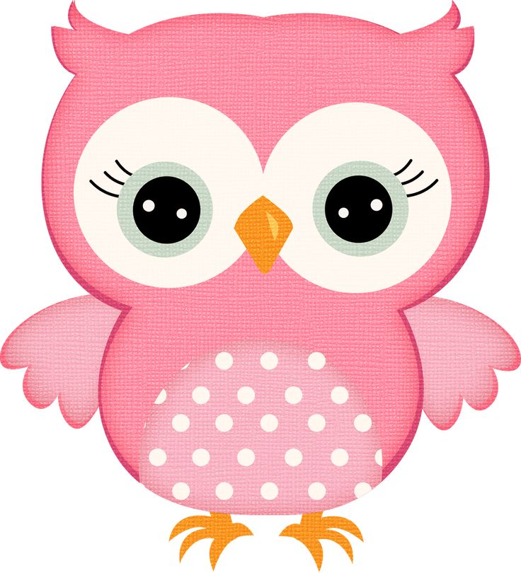 298 best owl clipart type art images on pinterest owls barn rh pinterest com Peacock Clip Art pictures of owls clipart