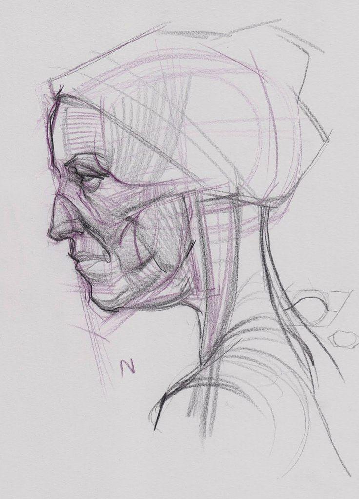 фигурку поросёнка анатомия лица человека для художников картинки этот