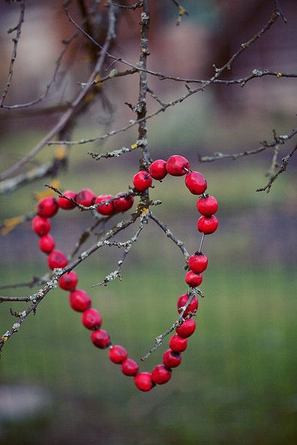 Cranberry Heart for Birds - threading rose hips or berries for autumn on fine wire