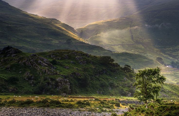 Somewhere in Wales II by J  T on 500px