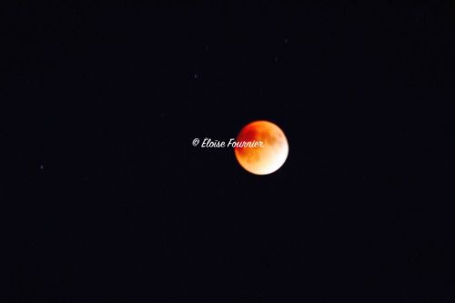 Super Moon and Lunar Eclipse Pointe-Claire, QC September 2015 More like this: http://photographically-challenged.tumblr.com/environment