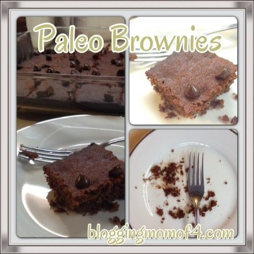 Paleo Brownies Made with Coconut Flour – Cake Like and Yummy