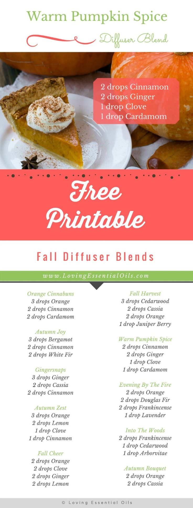 FREE Printable - Fall Diffuser Blends. Warm pumpkin spice includes cinnamon, ginger, clove and cardamom. #freeprintable #diffuserblends #fall #essentialoils