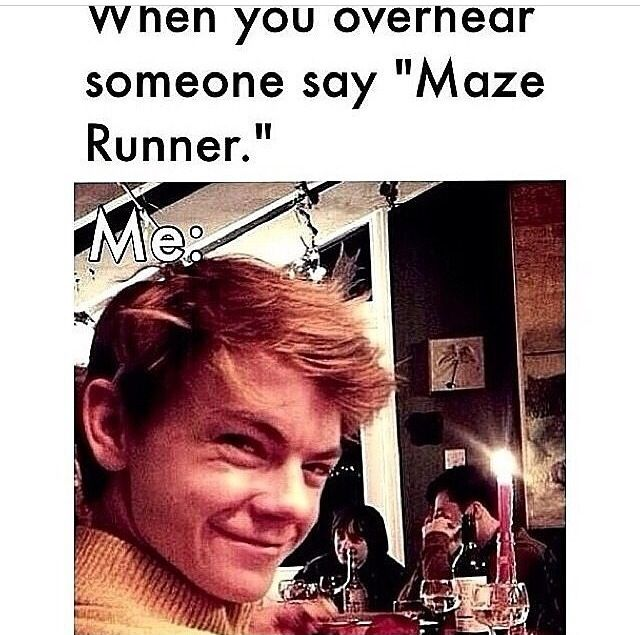 the table next to me in a restaurant were talking about the maze runner and all of my family stared at me and slowly smiled while i was staring at them secretly smiling very big and it was so cool
