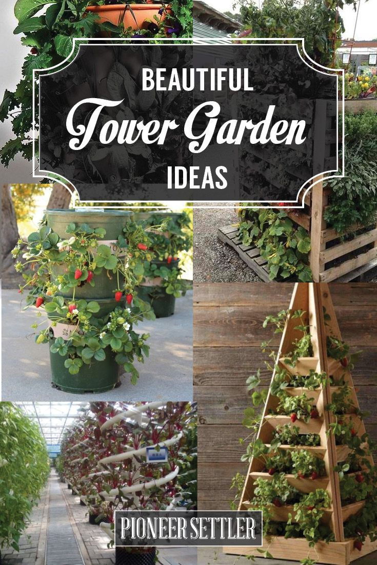 1194 best ideas about fruit vegetable garden on pinterest gardens grow your own and fruits - Garden tower vertical container garden ...