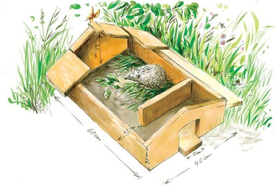 Fabriquer une cabane à hérissons http://www.lapausejardin.fr/vivre-au-jardin/cabane-a-herisson:
