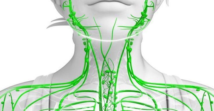Na lymfatický systém a uzliny se často zapomíná, ale pokud uvízne lymfa, v těle se nahromadí toxiny. Naučte se příznaky a jak ho opět pročistit.