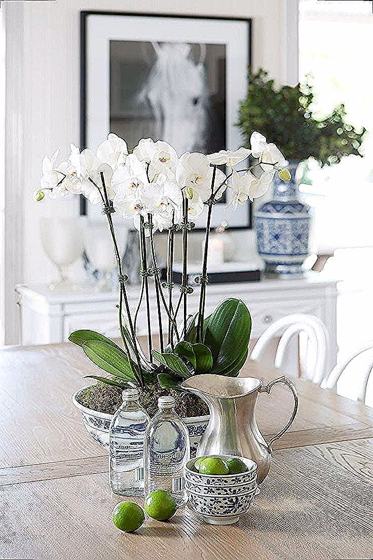 Orchidcenterpieces Orchid Centerpieces Dining Table Centerpiece Dining Table