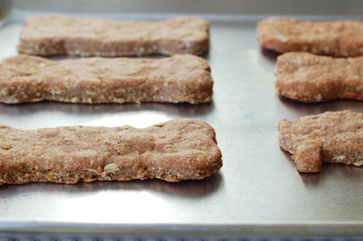 Homemade peanut butter dog biscuit recipe - might just have to try these