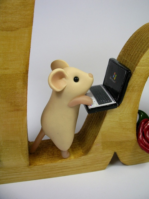 The working mouse