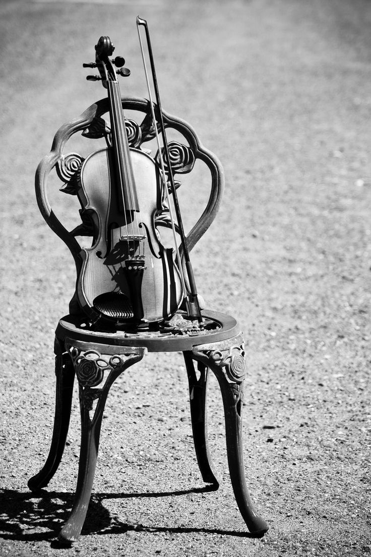 Empty room with chair violin and sheet music on floor photograph - Old Chair Violin