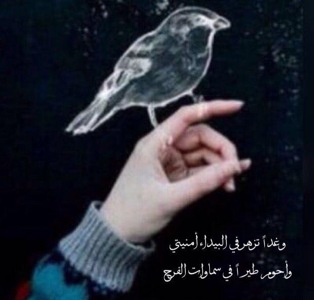 يارب و ماخاب من قال يارب Arabic Quotes Words Arabic Words