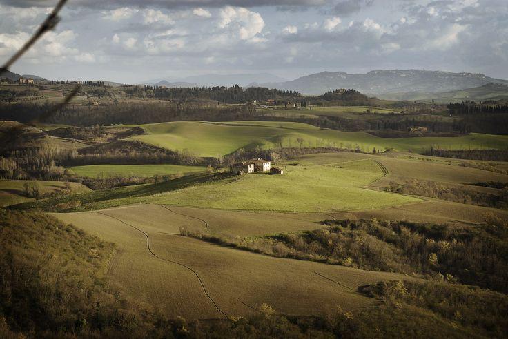 A view of Fattoria Barbialla Nuova organic farm.