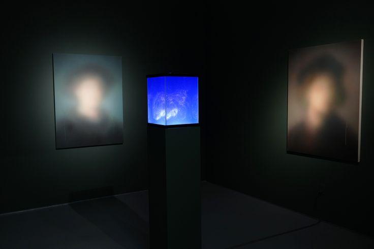 Miaz Brothers  mixed media installation