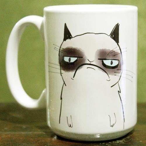 Чашка с недовольным котом. » Смешные Анекдоты Истории Цитаты Афоризмы Стишки Картинки прикольные Игры