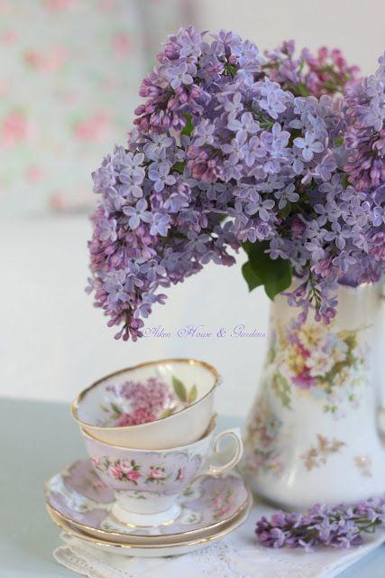 Aiken House & Gardens: Lovely Lilacs
