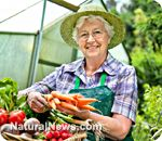 Small West Yorkshire town aims to be first town with food self-sufficiency by growing all its own vegetables