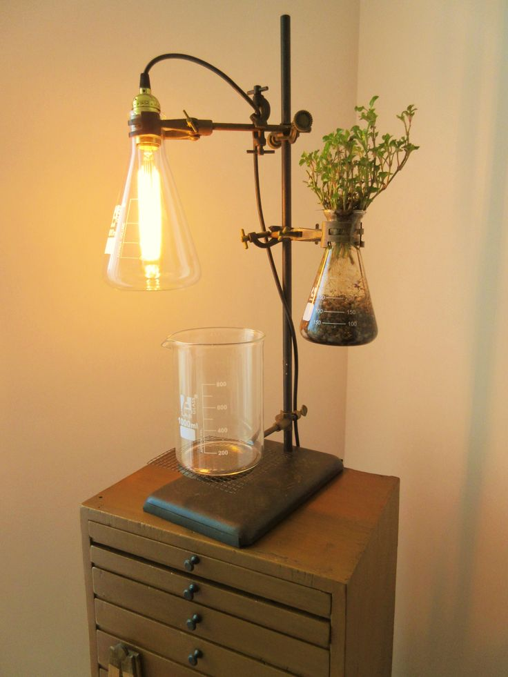 Laboratory glassware with antique light bulb