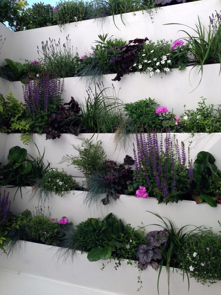 hanging garden living wall system small london garden