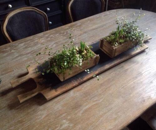 Steenmal voorjaarsdecoratie met bloembollen