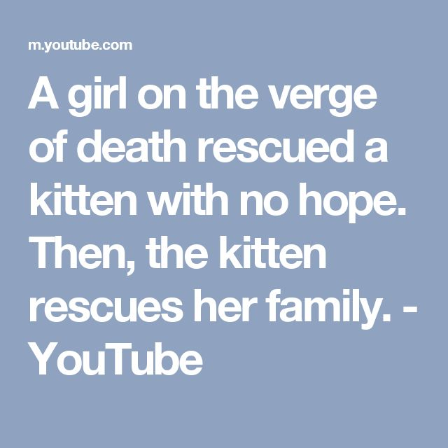 A girl on the verge of death rescued a kitten with no hope. Then, the kitten rescues her family. - YouTube
