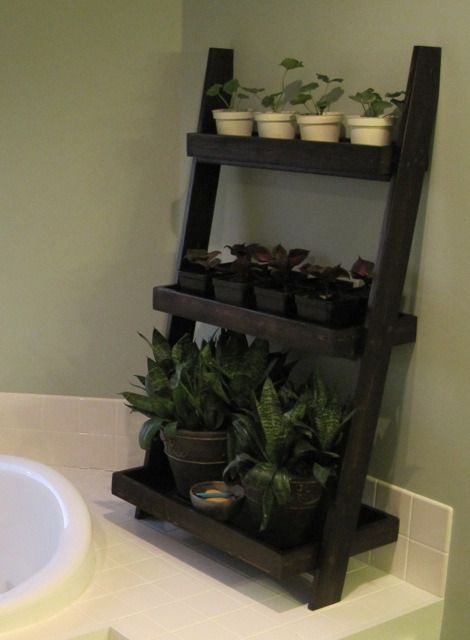 Leaning wall shelves as plant stand