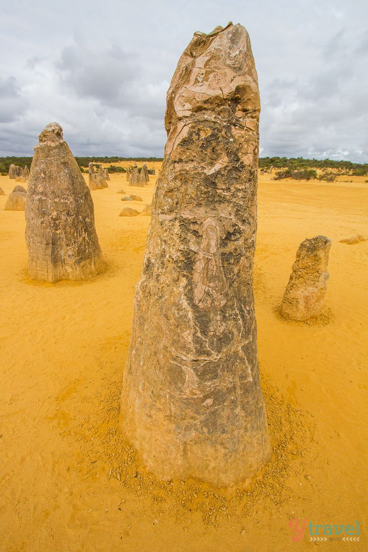 """The ancient limestone formations known as """"The Pinaccles"""" in Western Australia."""