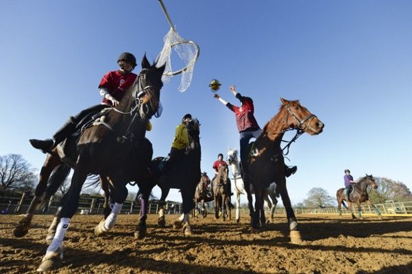 Horse & Hound's Madeleine Pitt joined the North London Horseball Club to put her ball skills to the test — on horseback. If you've always fancied giving horseball a try, take a look at her top tips for first-time success before you take to the pitch at http://www.horseandhound.co.uk/features/horseball-tips/#WQlvvZGbym7kIt32.99