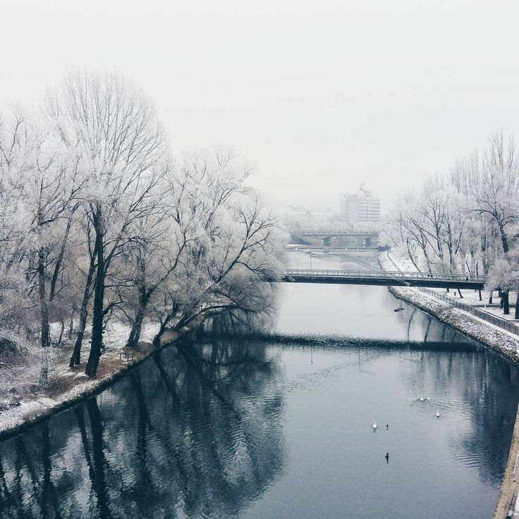 Dimineți albe de decembrie.  Fotograf: Anca Cheregi http://ghidlocal.com