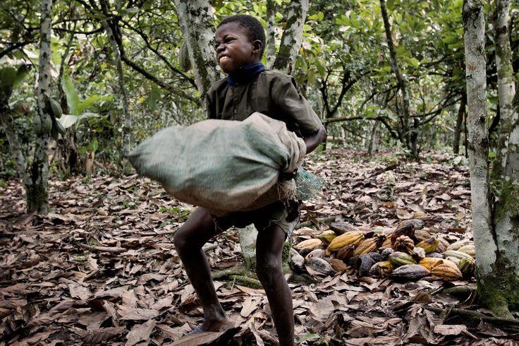 escravidão infantil na produção de chocolate