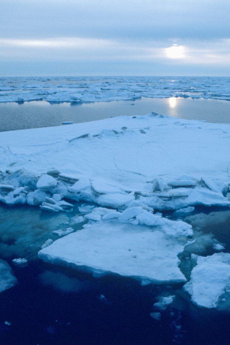 In questa immagine notiamo lo scioglimento dei ghiacciai, di conseguenza la distruzione di molti habitat degli animali (orsi polari, pinguini,renne...)