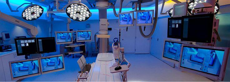 Morsani College of Medicine, University of South Florida Health