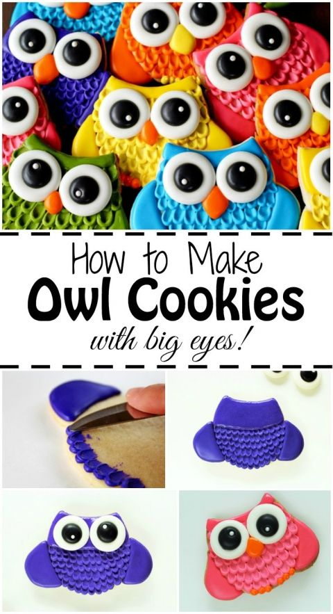 How to Make Owl Cookies with Big Eyes | The Bearfoot Baker