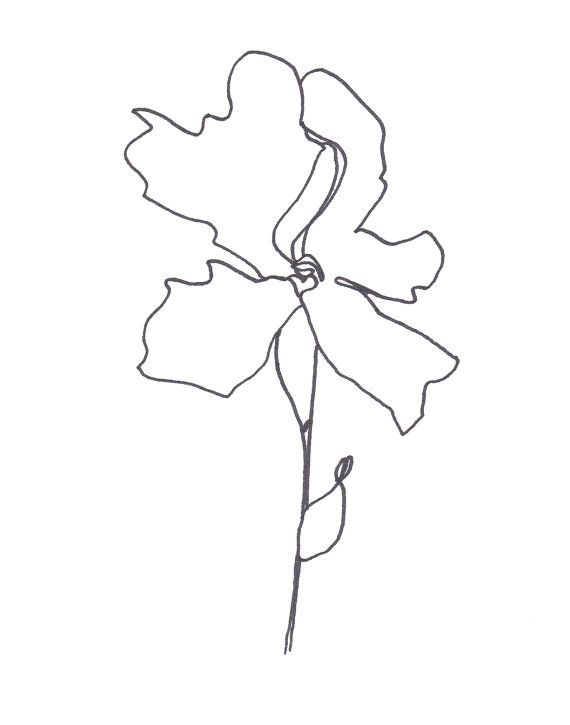 Abstract Flower Line Drawing : Original abstract minimalist drawing illustration on