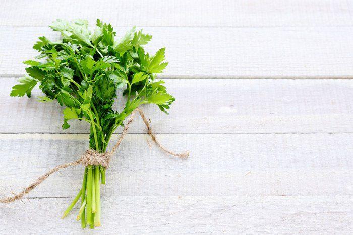 Comment utiliser le cilantro, ou coriandre, en cuisine