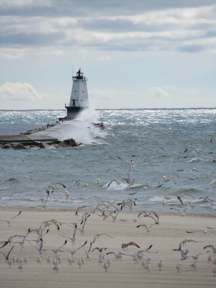 Ludington, MI Love my Michigan!!  My babies could spend all day feeding the seagulls! ;)