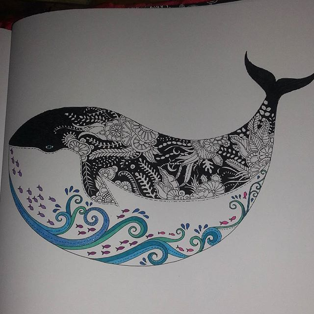 Lost Ocean Coloring BooksColouringOrcasWhalesThe