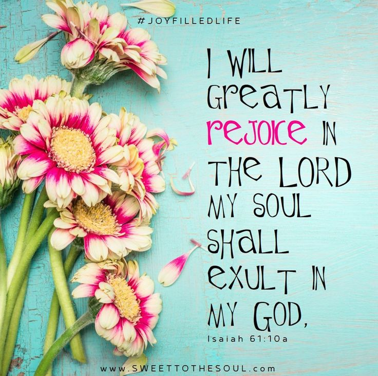 Isaiah 61:10 - Joy Filled Life from Sweet To The Soul