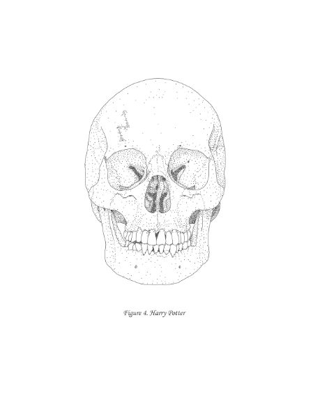 Guess that scar cut deeper than we thought. Harry Potter skull illustration from Virtual to Vintage.