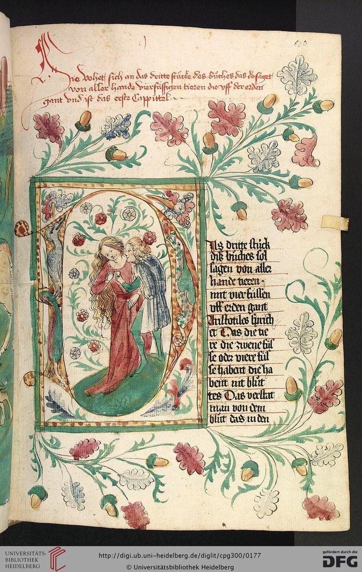 300 Konrad Von Megenberg Das Buch Der Natur Hagenau