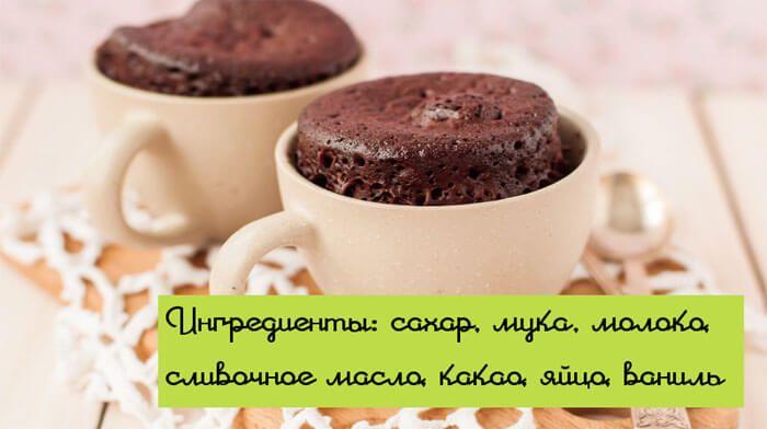 """Шоколадный кекс в микроволновке """"Чудо Маниту"""""""