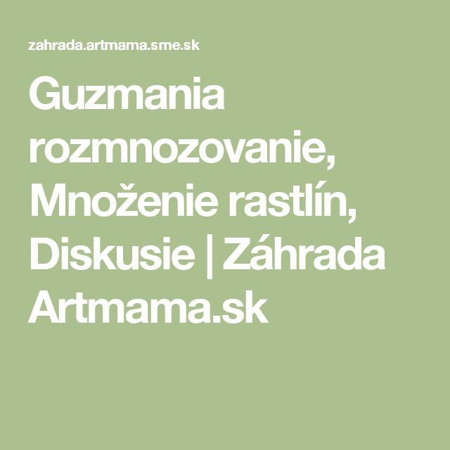 Guzmania rozmnozovanie, Množenie rastlín, Diskusie | Záhrada Artmama.sk