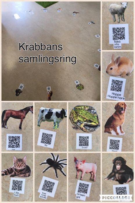 Skapa QR-koder från text, bild, ljud & video på din enhet.