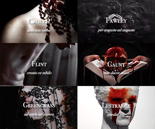 Sacred Twenty-Eight pureblood families: Crouch, Fawley, Flint, Gaunt, Greengrass, Lestrange