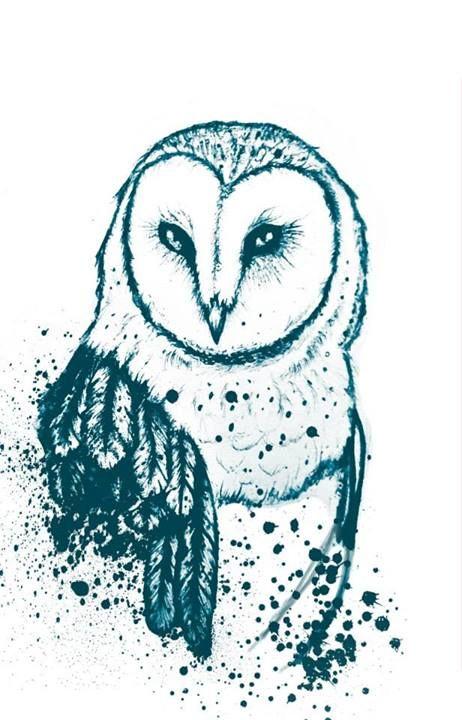 Owl drawing by Olenka more here: https://www.facebook.com/pages/Olenka/647167888679052
