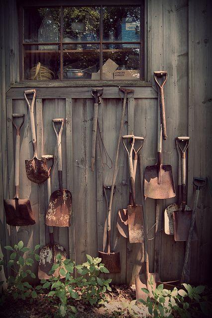 old rusty shovels as garden art