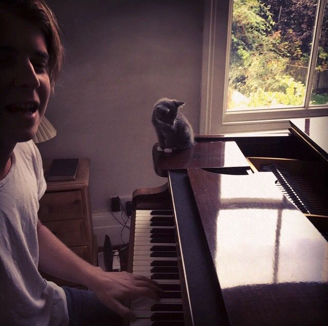Tom Odell and a kitten
