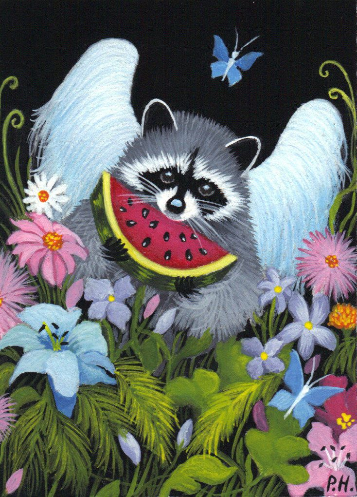 ACEO Print Raccoon Butterfly Flowers Water Mellon | eBay