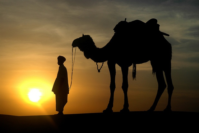 sunset in tharwoestijn (Rajasthan) - Eric T'Kindt by Thomas Cook Belgium, via Flickr